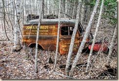 Lostinwoods (1 of 1)