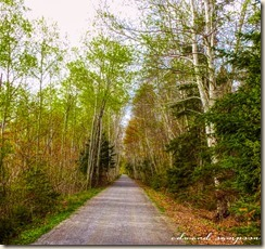 May29 Canada Trail-